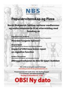 NBS_PopPizza2015_nyDato